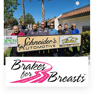 Team and Brakes for Breast image